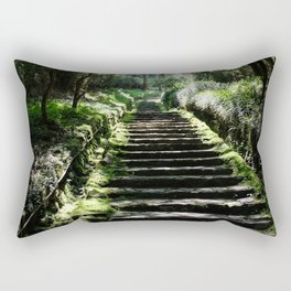 Rikyuu Road Rectangular Pillow