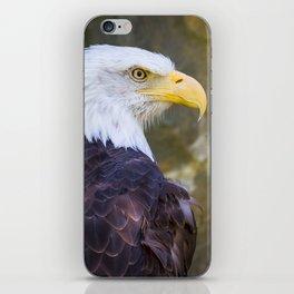 Baby Canadian Goose iPhone Skin
