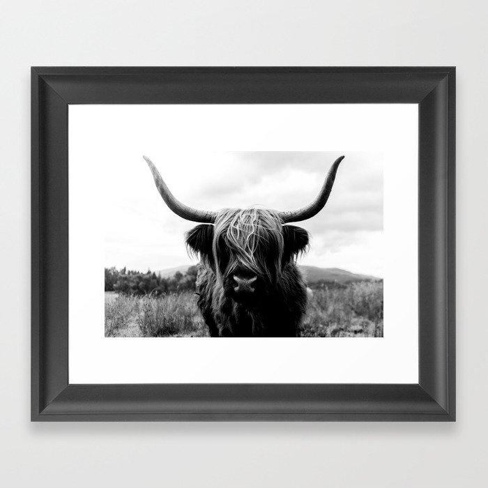 Scottish Highland Cattle Black and White Animal Framed Art Print