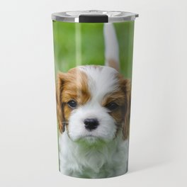 Cavalier King Charles spaniel puppy in garden Travel Mug