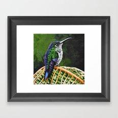 Many Spotted Hummingbird Framed Art Print