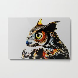 Magic the Owl  Metal Print
