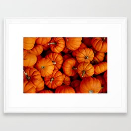 Pumpkins! Framed Art Print