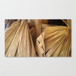 Tobacco Leaf - Vinales Cuba Canvas Print