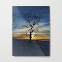 Sunset tree Metal Print