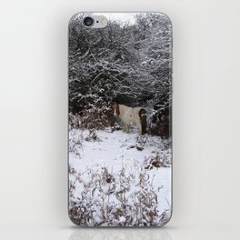 New Forest pony in the snow iPhone Skin