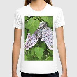 bunch of lilac 164 T-shirt