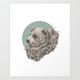 sage bear Art Print