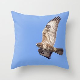 Common Buzzard (Buteo buteo) in flight Throw Pillow