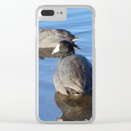 Ducks on Lake Clear iPhone Case