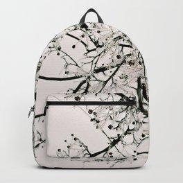 Brittle Backpack