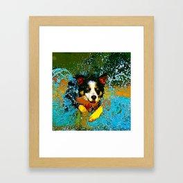 border collie jumping in water vector art Framed Art Print
