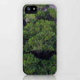 HALF AND HALF iPhone Case