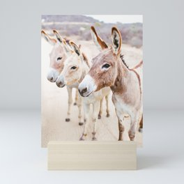 Three Donkeys in Baja, Mexico Mini Art Print