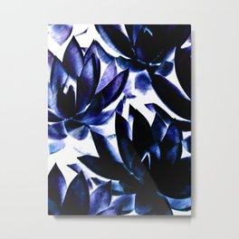 Echeverias in Blue Metal Print