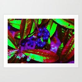 WONKA berries Art Print