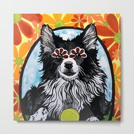 Gizmo the Border Collie Metal Print