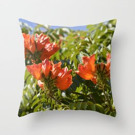 """Flaming-red Peacock (ii)"" by ICA PAVON Throw Pillow"