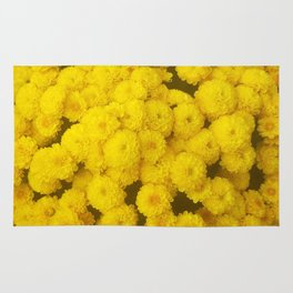 Autumn Gold - Chrysanthemums Rug
