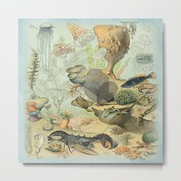 SEA CREATURES COLLAGE, OCEAN ILLUSTRATION Metal Print