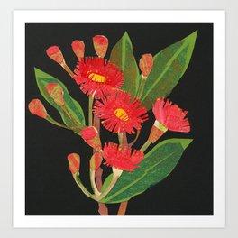 Flowering Gum Art Print