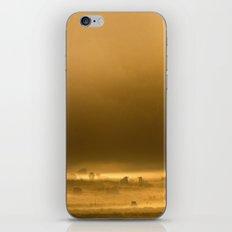 Autumn Dawn iPhone & iPod Skin