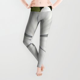 Beautiful Blossoming White Osteospermum  Leggings