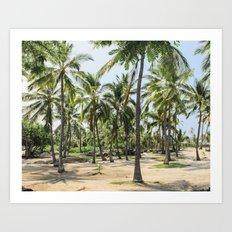 Loads of palm trees Art Print