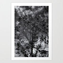 Gray Autumn Art Print