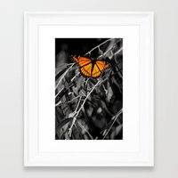 sublime Framed Art Prints featuring Sublime by ChandalC