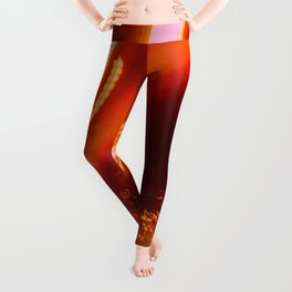 Abstract City Night - Spinning in Circles Leggings