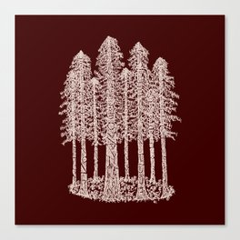 Coastal Redwoods Cathedral Ring Sketch - Red Number 2 Canvas Print
