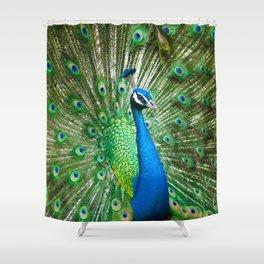 Beautiful Male Peacock Shower Curtain