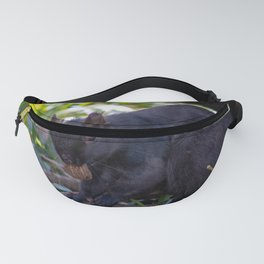 squirrel eating nut Fanny Pack