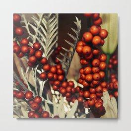 holly berries 715 Metal Print