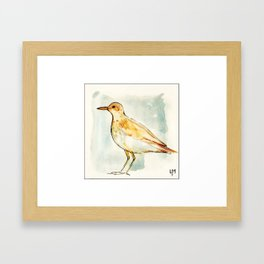 Waiting Bird Framed Art Print
