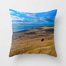 Vantage Throw Pillow