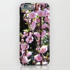 Nature rises Slim Case iPhone 6s