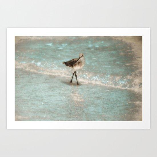 Bird Walking On The Beach Art Print