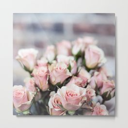ROSES - PINK - PHOTOGRAPHY - FLOWERS Metal Print