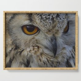 Eurasian eagle-owl, wild bird Serving Tray
