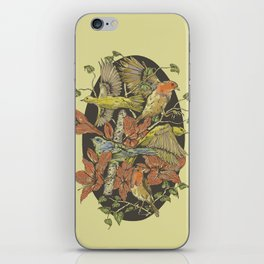 Robins and Warblers iPhone Skin