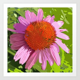 Echinacea, coneflower, purple pink flower Art Print