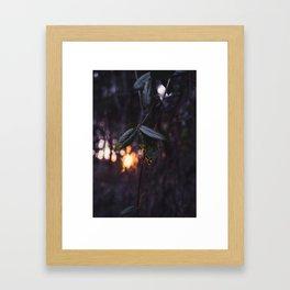 Golden Vein Framed Art Print