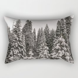 Winter Wonderland - Carol Highsmith Rectangular Pillow