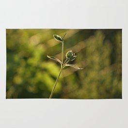 Wild garden flower Rug