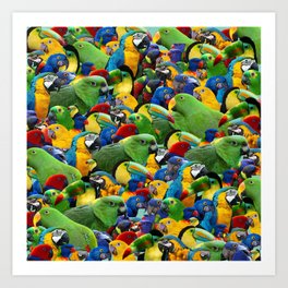 Parrots collage birds photo print parrots pattern green blue red yellow Art Print