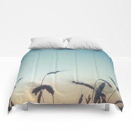 Summer of Straw Comforters