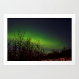 Arctic Lights Art Print