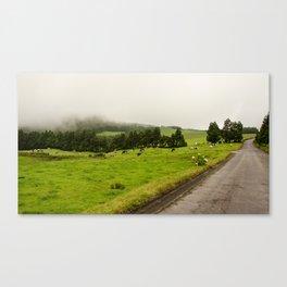 Dans le brouillard Canvas Print